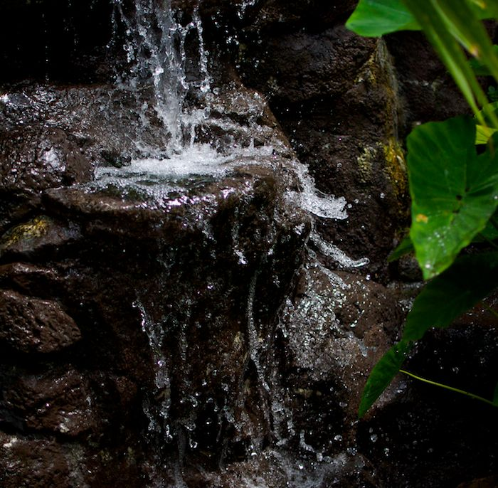 Waterfall at botanical gardens 2