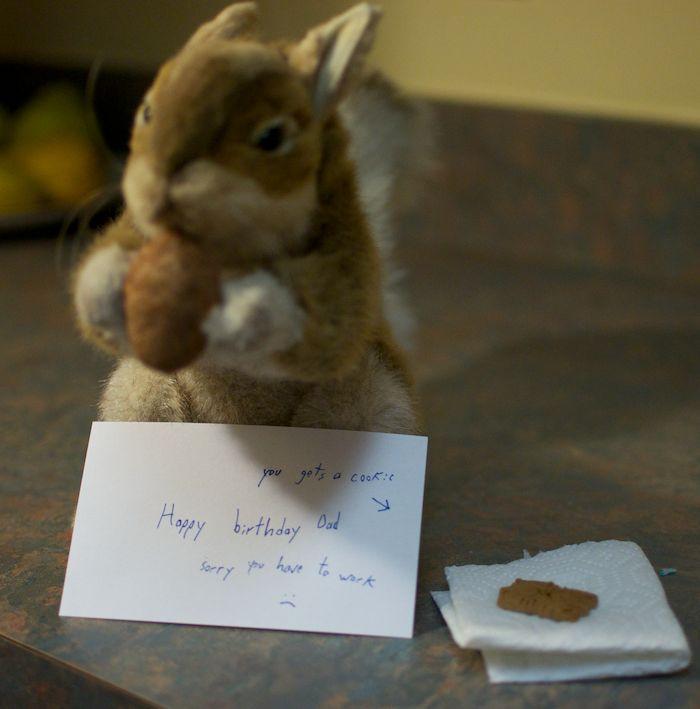 Squirrel happy birthday