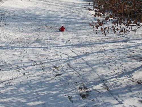 Zachary sled